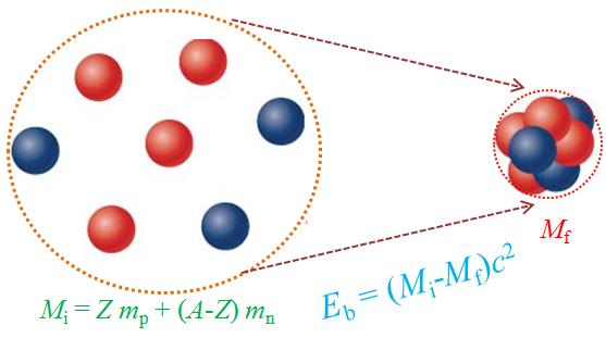 311: Fisika SMA: Mengapa Massa Inti Lebih Kecil Daripada Jumlah Massa Proton dan Neutron Penyusun Inti?