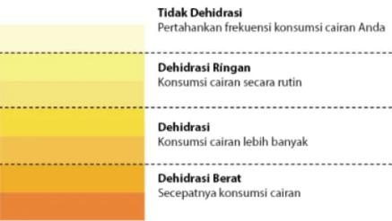 015: Label Warna Urin Pemanen pada Urinoir